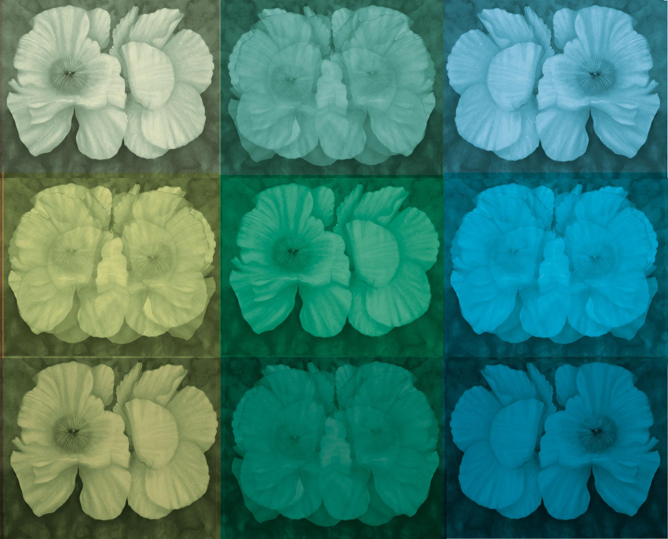 Escala-3-en-raya-de-flores-(amarillo_azul)